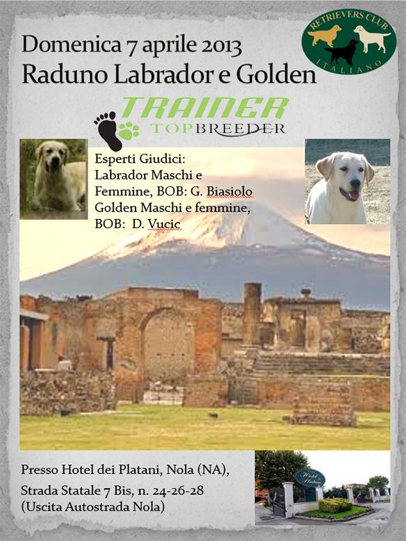 Expocani Calendario.Direttivo Retrievers Club Italiano